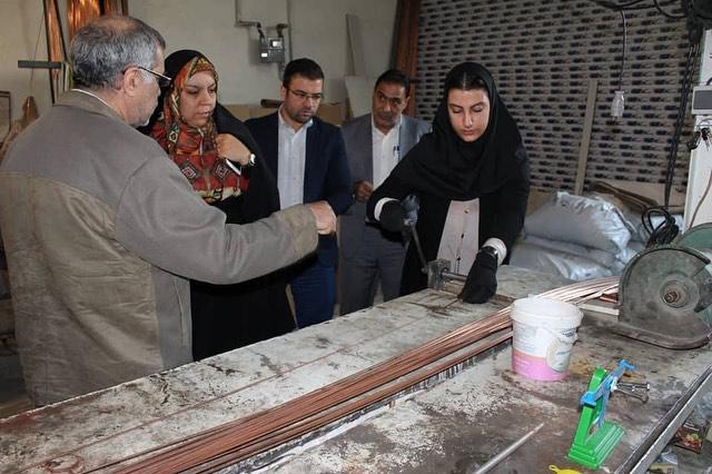 بازدید از تولید اسباب بازی فکری با خم و برش مفتول توسط محمد علی رئیس دانا و فاطمه فکوریان